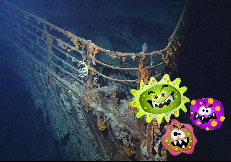 titanic_bacteria